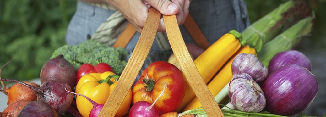 Alimentation-responsable-et-durable,-vers-des-systèmes-alimentaires-territorialisés